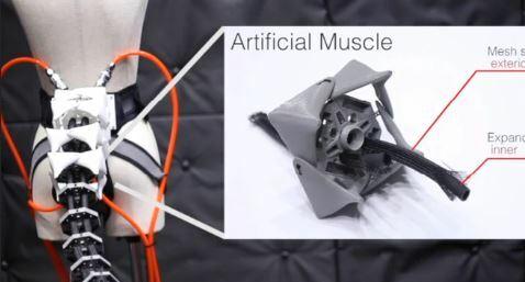 Ingenieros japoneses investigan una extremidad robótica